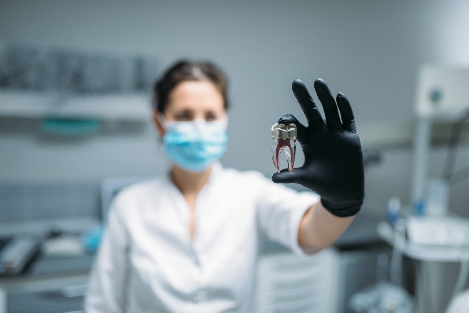 dentist shows tooth pin and model dental clinic